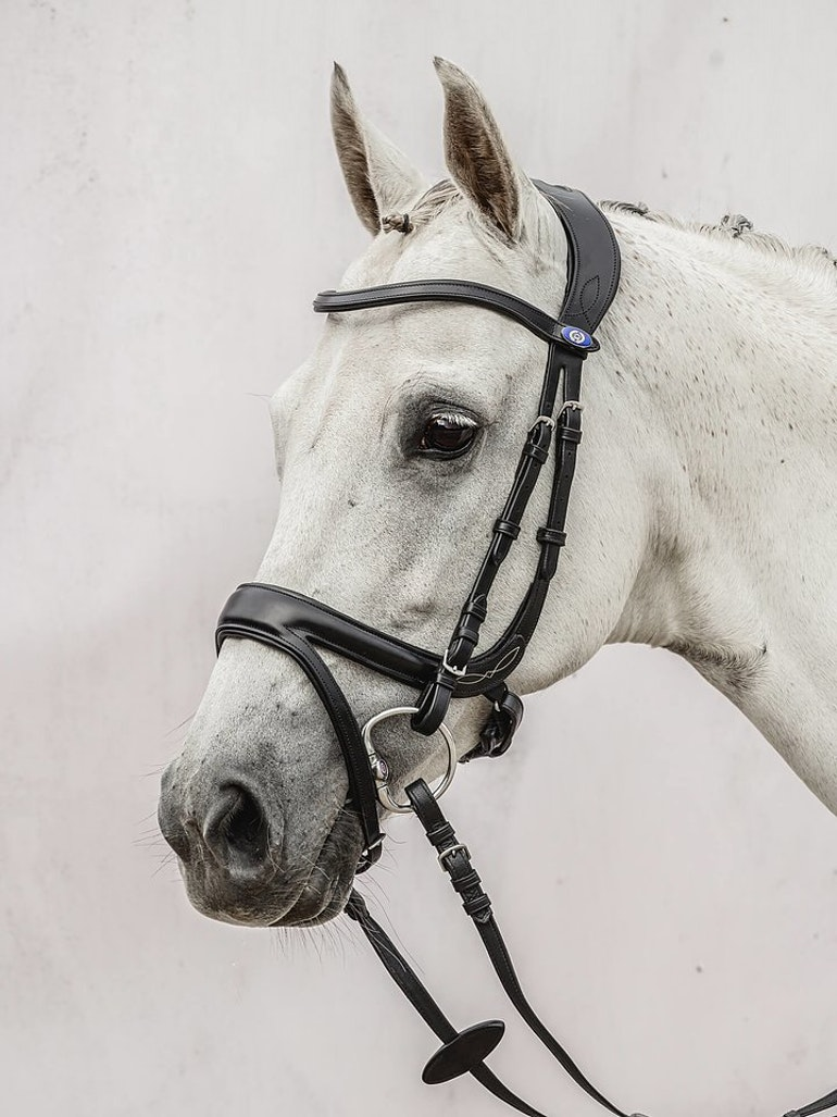 Jump Off Bridle